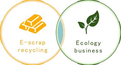 E-scrap recycling Ecology business