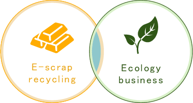 E-scrap recycling Ecology business